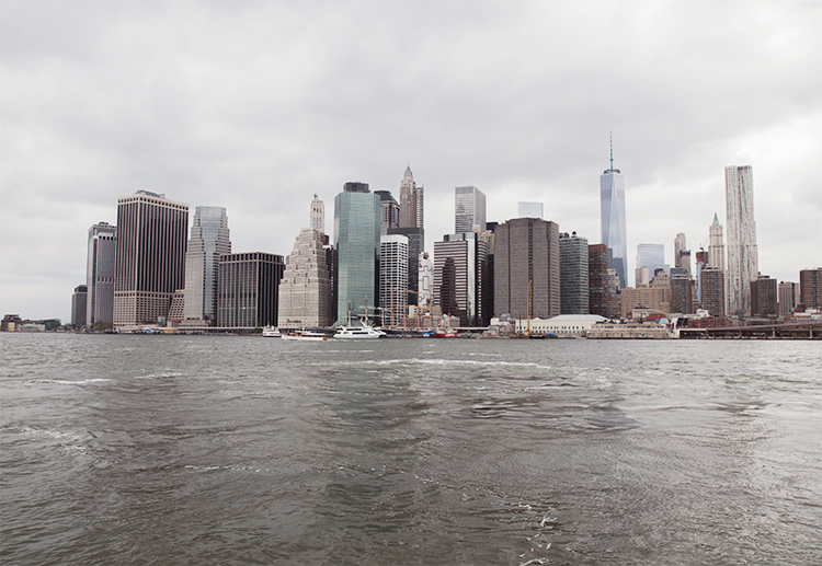 NY(7)